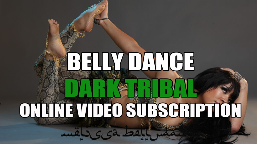 Belly Dance Level 1 Subscription Videos